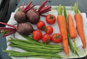 A fine selection of vegetables
